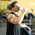 Каталог спортивного питания