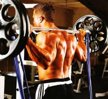 Амортизаторы в силовых упражнениях
